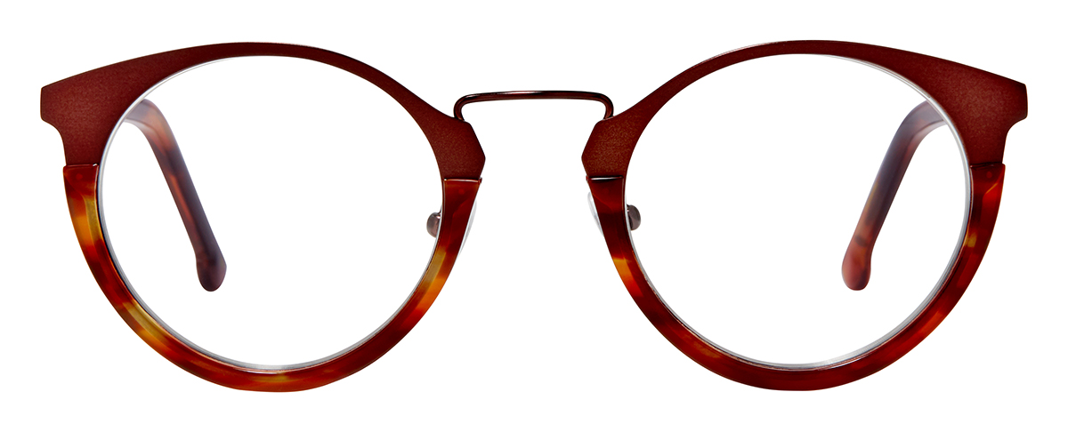 PARK - Dark Brown with Vineyard Tortoise