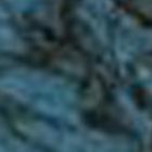 BLUE WIGGLE